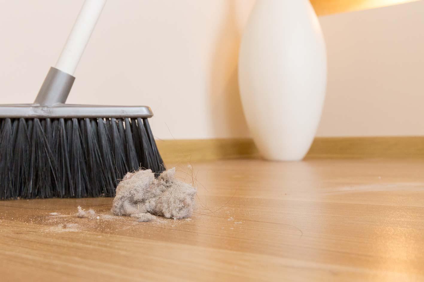 polvere pavimento